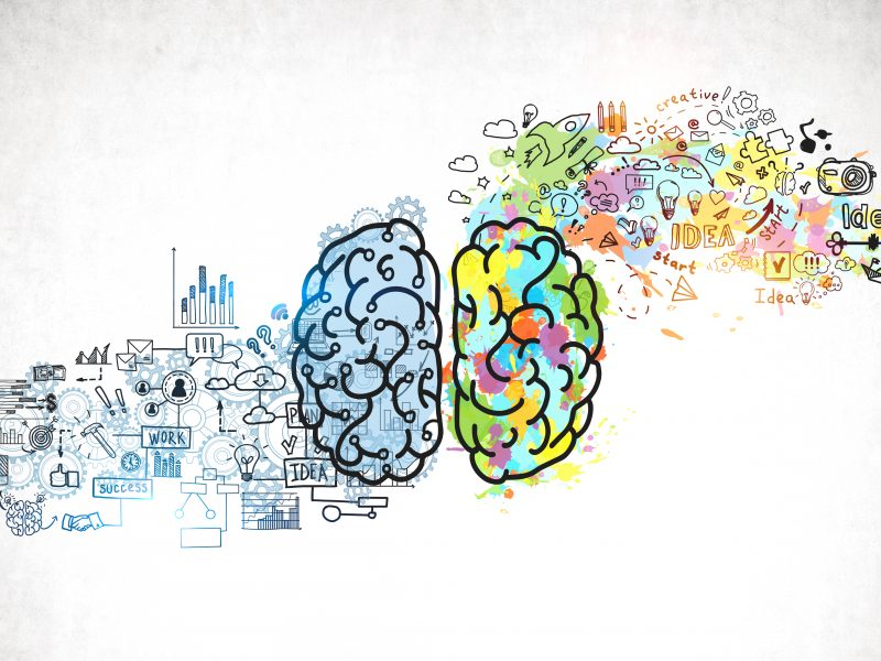 Design and the Brain – Right and Left